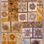 Dye Garden Sampler overall image