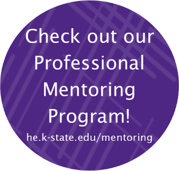 Professional Mentoring